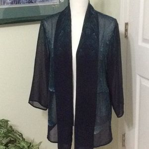 ❤️EUC Chico's sheer open front top, navy & green